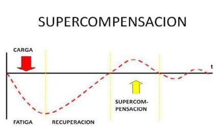 Supercompensado