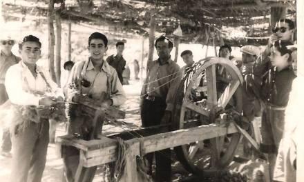 El esparto en Calasparra: guitas de historia