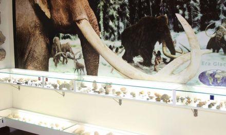 El Museo Arqueológico de Cehegín recibió 25.089 visitas en el pasado 2015