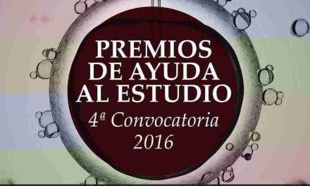 Robles Chillida convoca las ayudas de estudio para jóvenes que han finalizado Bachillerato y FP