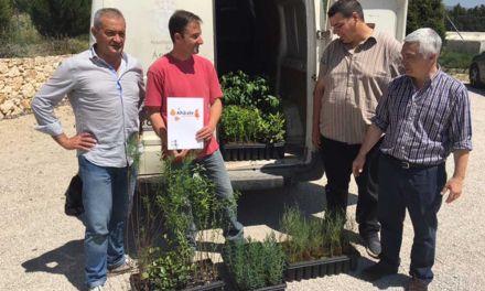 Un vivero de Moratalla dona doscientos árboles al Ayuntamiento de Águilas