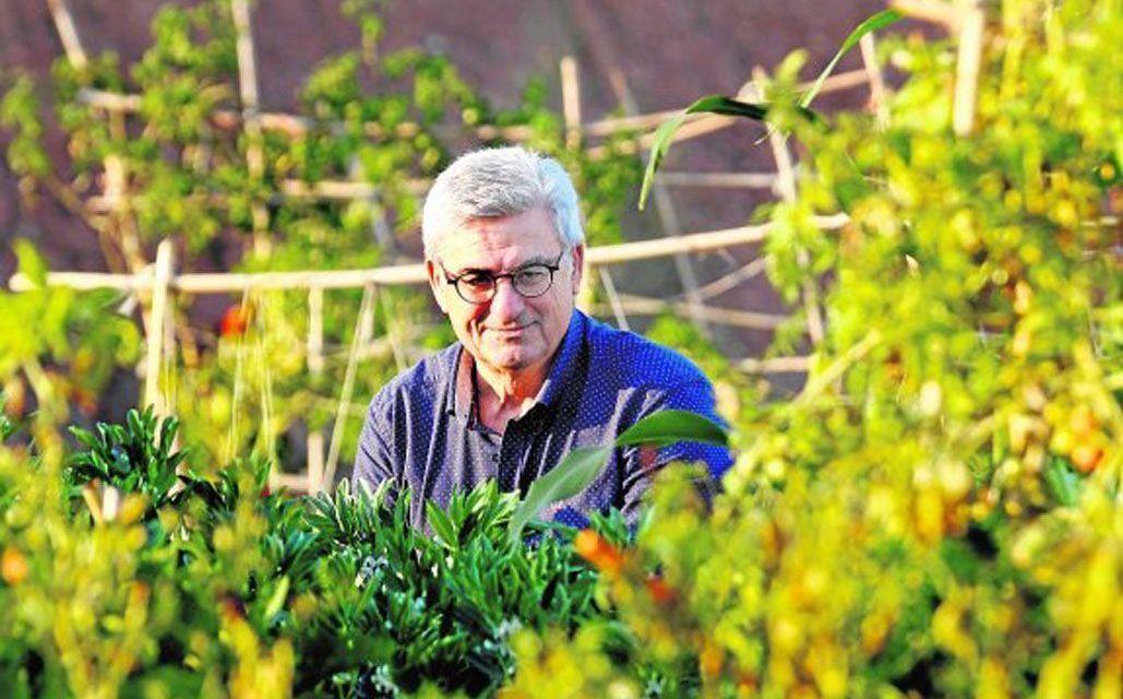 José María Egea Fernández, pregonero de las Fiestas Patronales de Bullas