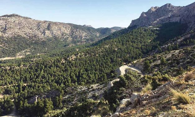 Sierra Espuña renueva la Carta Europea de Turismo Sostenible