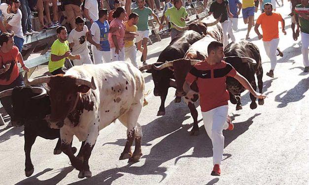 """""""Lo principal es el respeto por el toro y por los compañeros"""", Antonio García García, corredor de encierros"""