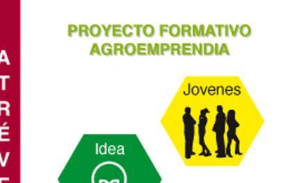 El proyecto 'Agroemprende' permitirá a 15 jóvenes formarse en técnicas agrícolas y poner en marcha su empresa