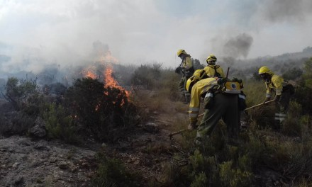 Medio Ambiente activa la prohibición de hacer fuego en entornos forestales para evitar el riesgo de incendios