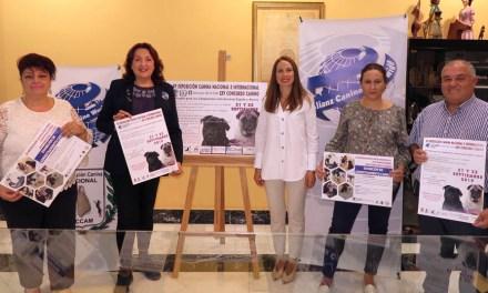 El concurso canino de Caravaca cumple 25 años arropado por actividades para fomentar la tenencia responsable de animales