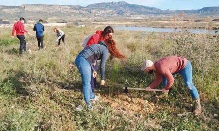 40 voluntarios participan en la reforestación de la antigua escombrera
