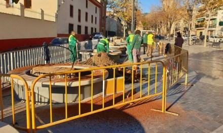 El Ayuntamiento sustituye los siete árboles que llevaban varios años talados en La Corredera por nuevas especies