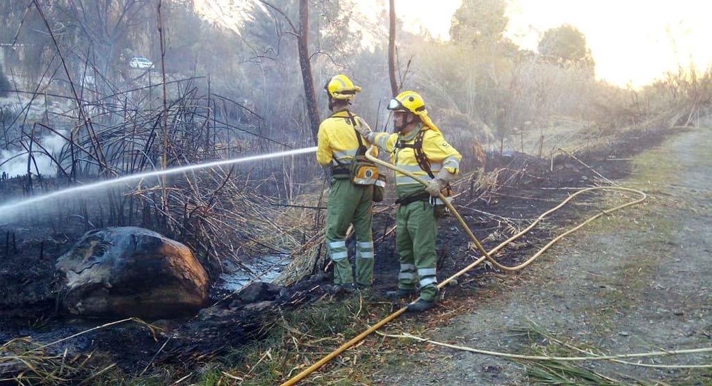 La Comunidad pone en marcha el dispositivo de prevención de incendios Thader formado por 32 agentes medioambientales