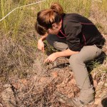 María Ángeles Pérez Navarro, la investigadora que nos indica cómo cambiará en el futuro el bosque mediterráneo