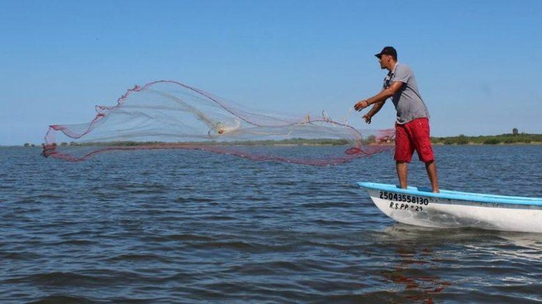 Imagen ilustrativa de un pescador   Foto: especial