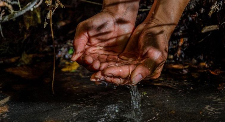 Cajicá: Abren inscripciones para Concurso de Fotografía Ambiental
