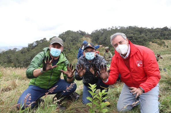 Jornada de reforestación en el Páramo de Guerrero