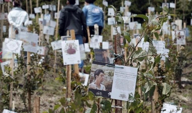Siembran páramo de Guerrero con cenizas de víctimas de covid