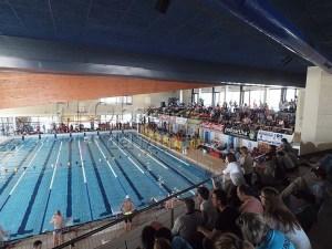 Gran ambiente en la piscina Almeriz / Foto: C.Pascual
