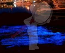 """""""Lágrimas azules"""" de China amenazan vida marina"""