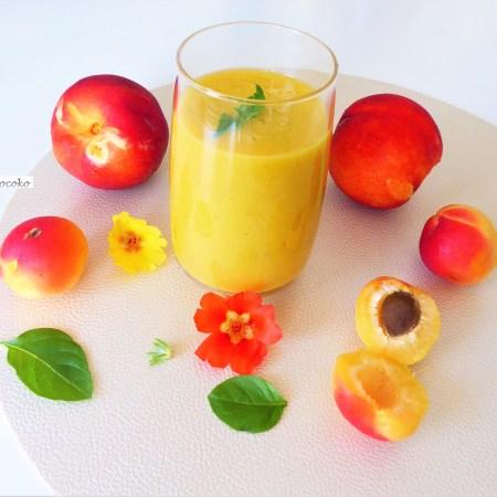 gaspacho melon nectarine et abricot