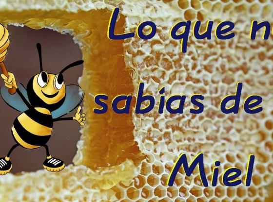 miel de abeja timos miel falsa china