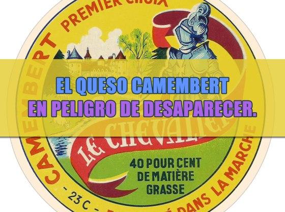 queso camembert original