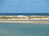 Vue sur la mer depuis Mallacoota
