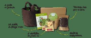 idée cadeau : box jardinage bio mon petit coin vert idée cadeau écologique
