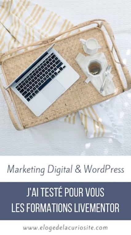 J'ai testé pour vous les formations LiveMentor Marketing Digital WordPress, voici mon avis- blogging