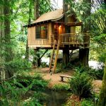 Diy Treehouse For 2018 Summer Times Elonahome Com