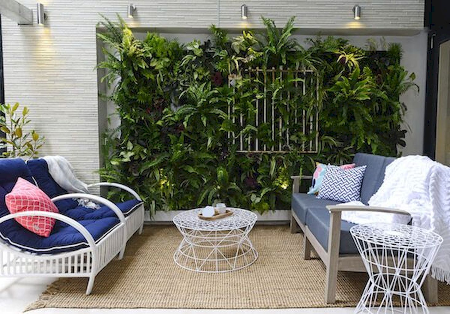Best Indoor Plants for Tropical Home Decoration Part 28 ...