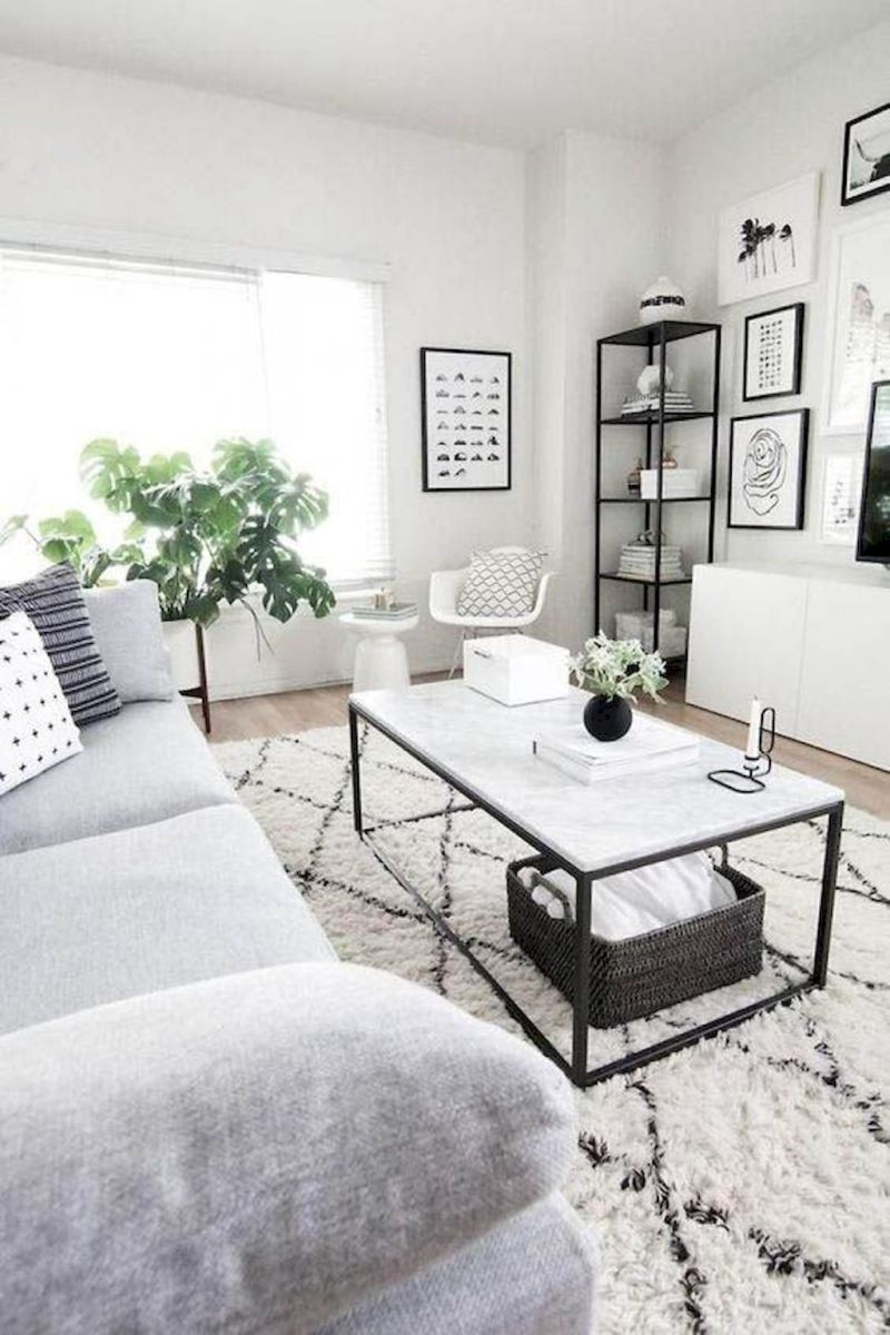 Comfort Living Room with Friendly Ambience of Indoor Greeneries Decoration Part 19