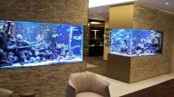 Creative Wall Auarium designs For Home Decoration and Amazing Room Separator Part 29