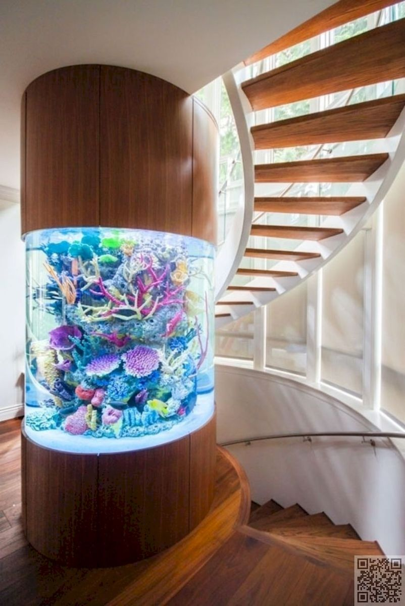 Creative Wall Auarium designs For Home Decoration and Amazing Room Separator Part 8