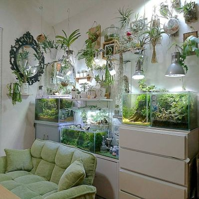 Exotic Wall Mounted Aquarium Giving Better Mood Everyday Part 38