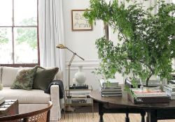Lively Living Room Vibe with Indoor Plant Decoration Part 45