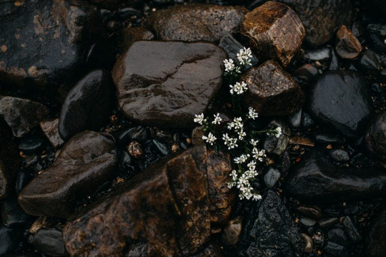 unfurl45-photography-glencoe-elopement-wedding-inspiration-outdoor-mountains-scottish-highlands-intimate-ceremony-elope-boho-water