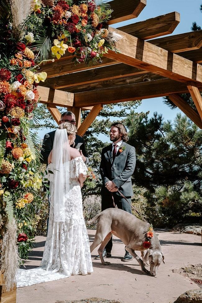 Courtney29-Lynn-colorado-adventure-elopement-packages-destination-wedding-photographer-estes-park-elope-pet-dog