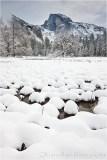 Gary Hart Photography: Fresh Snow, Cook's Meadow, Yosemite