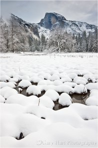 Half Dome and Snow, Cook's Meadow, Yosemite