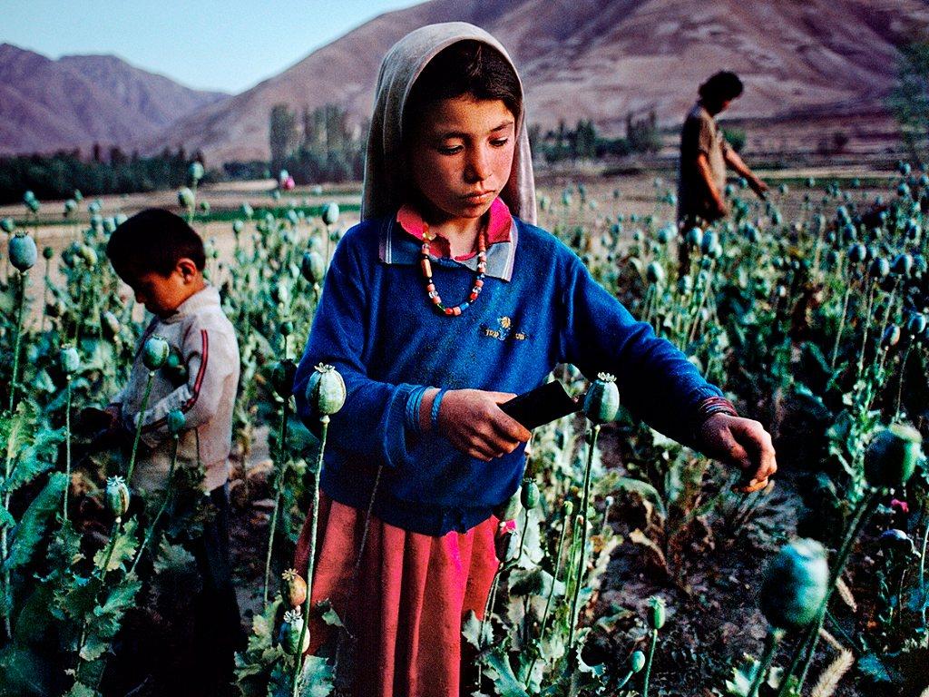 Oro intravenoso: geopolítica del opio (2/2)