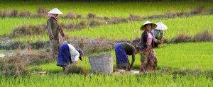 Laos, amor por China