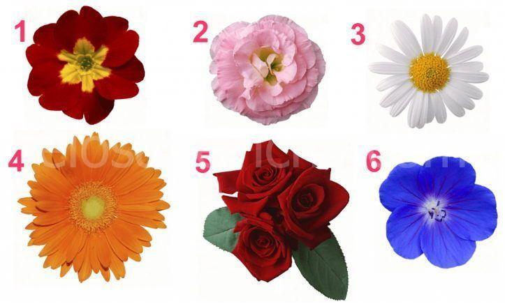 Scegli un fiore e scopri i segreti della tua femminilità!