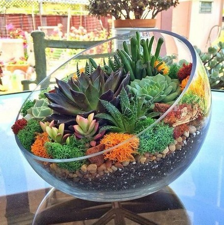 15 Best DIY Mini Terrarium Garden Projects And Ideas 08 1