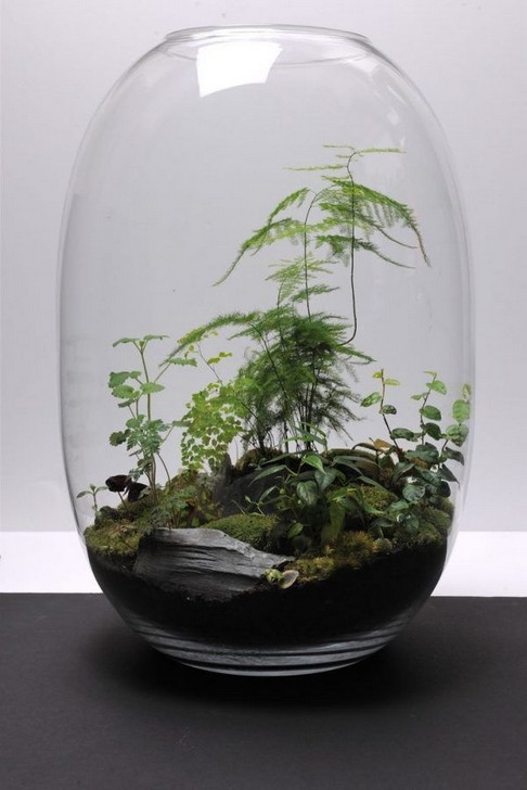 15 Best DIY Mini Terrarium Garden Projects And Ideas 24 1