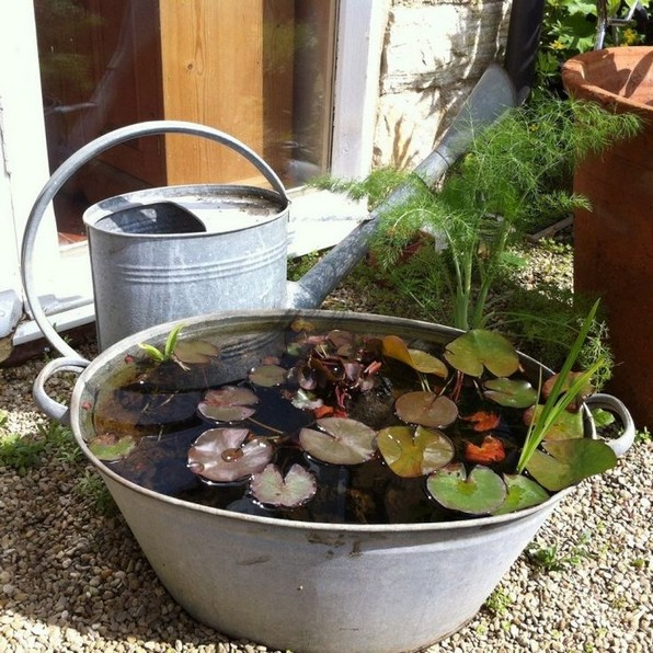 15 Brilliant And Creative DIY Nano Pond Garden Combination 11