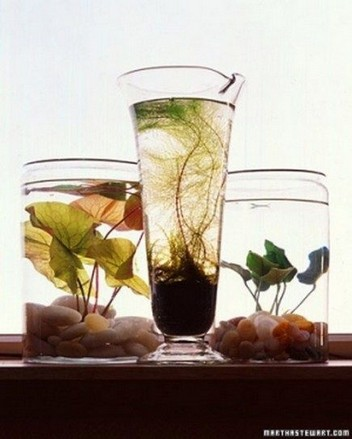 15 Brilliant And Creative DIY Nano Pond Garden Combination 19