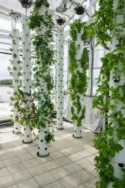 18 Finest Hydroponic Garden Ideas To Decorate Your House 05