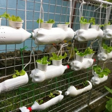 18 Finest Hydroponic Garden Ideas To Decorate Your House 23