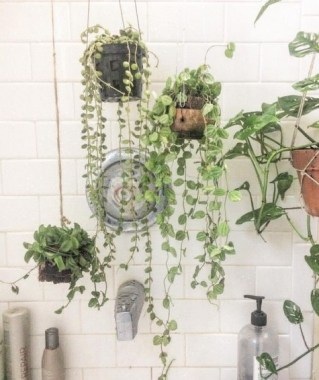 18 Highest Hanging Plants Ideas For Bathroom 10