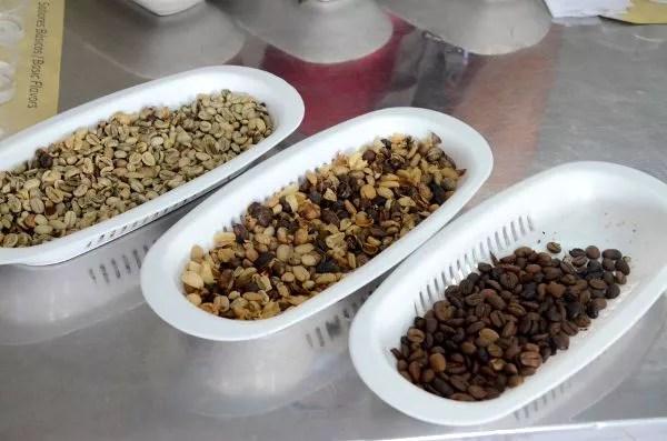 Cata de café San Alberto en Buenavista