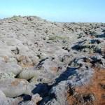 El campo de lava del volcán Laki en Islandia